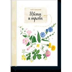 Мой гербарий. Цветы и травы Анна Васильева