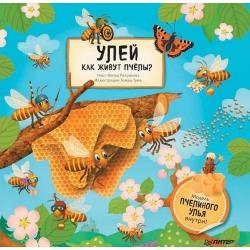 Улей. Как живут пчёлы? Житка Петрикова