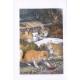 Удивительный Александр и крылатые кошки. Урсула Кребер Ле Гуин