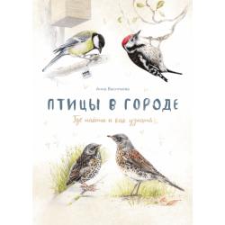 Птицы в городе. Где найти и как узнать. Анна Васильева