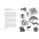 Вижу насквозь. Удивительные рентгеновские снимки животных. Ян Паул Схюттен, Ари ван'т Рит